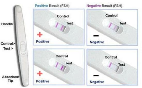 Home Pregnancy Test Kit : What they are and how do we use